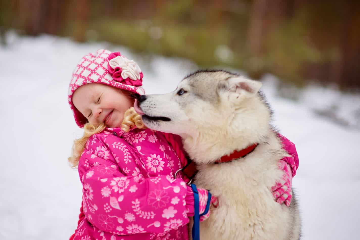Are Huskies Good with Kids? A Guide for Parents