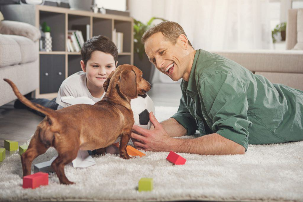 Are Dachshund Puppies Good with Kids?