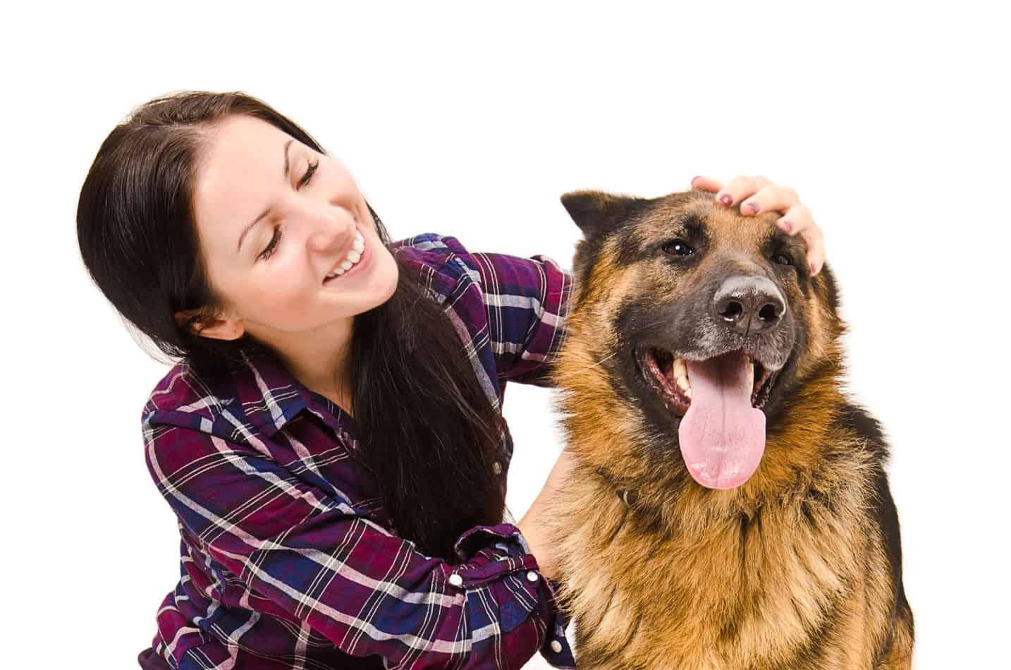 German Shepherd Temperament: What's it Like Owning One?