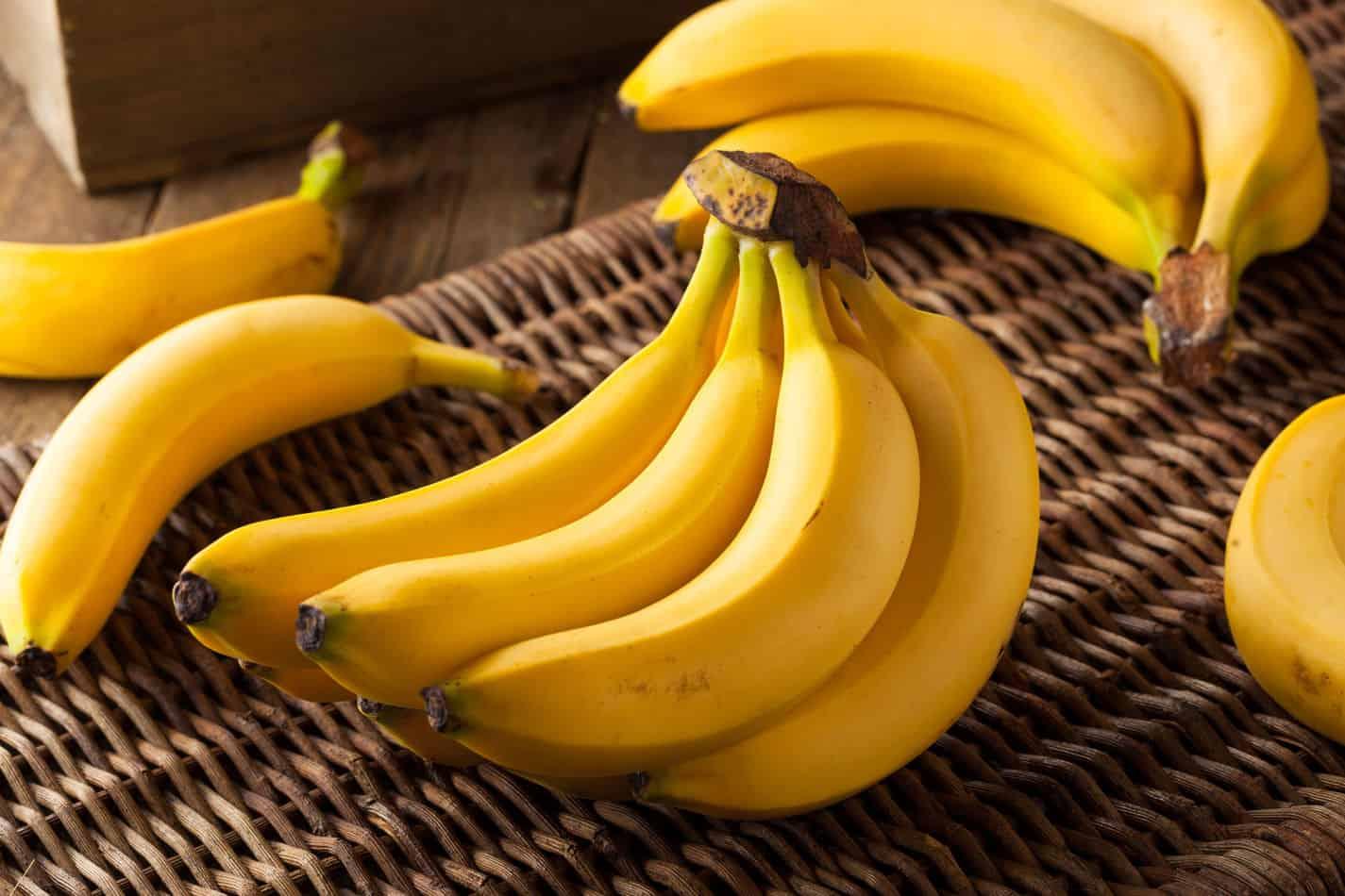Can Beagles Eat Bananas?