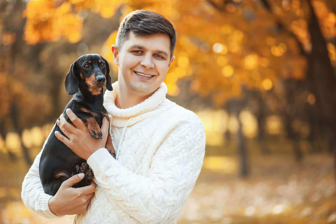 Dachshund Temperament: What's it Like Owning One?
