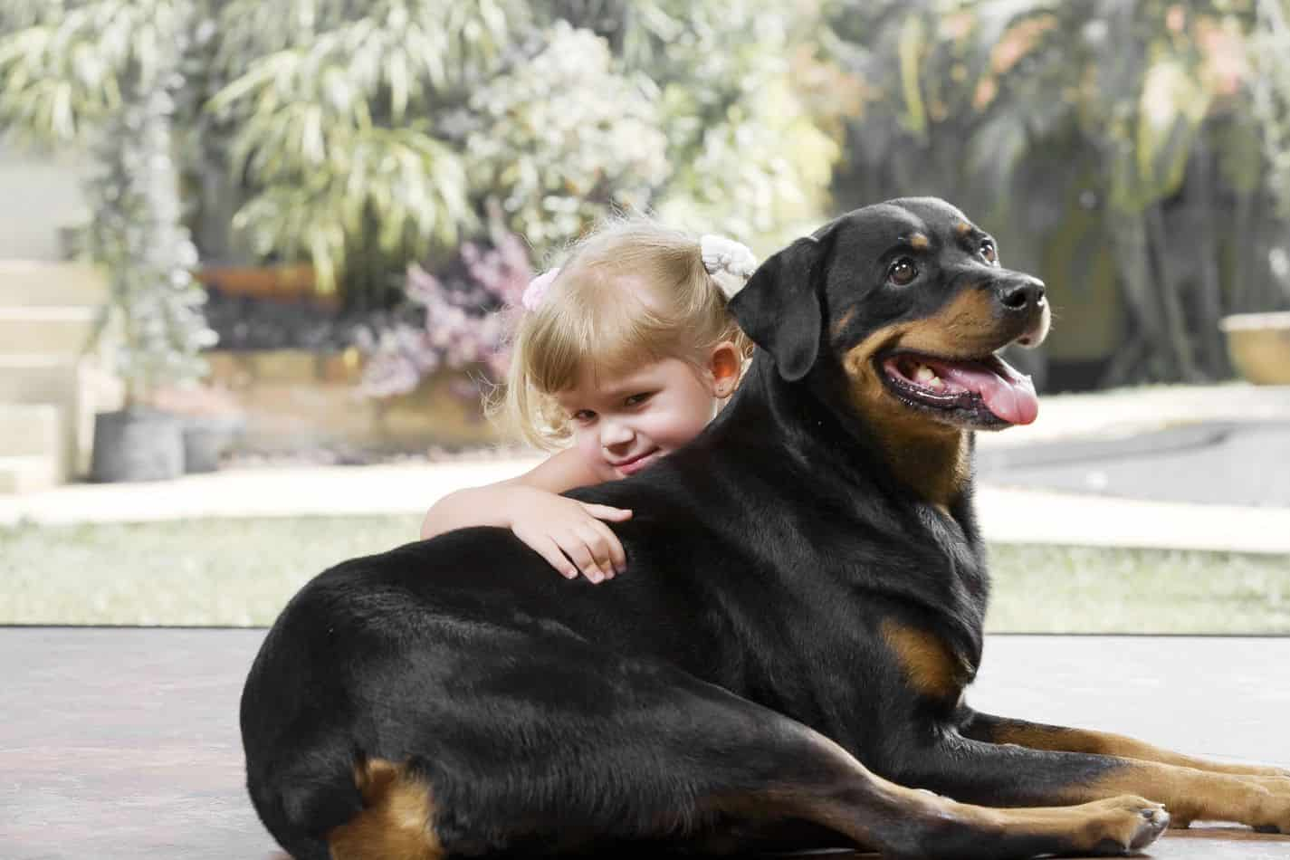 Are Rottweilers Good with Kids? A Guide for Parents