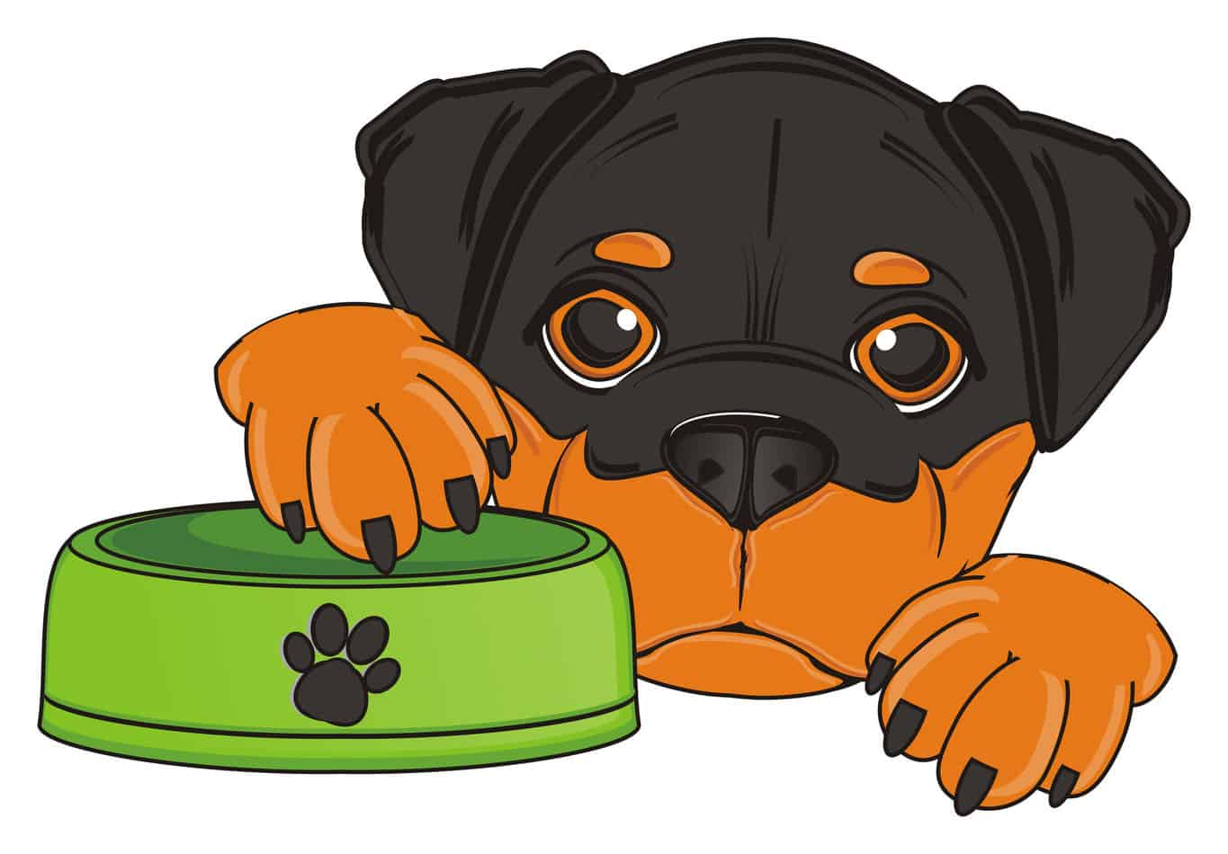 The Ultimate Guide to What Rottweilers Can (and Can't) Eat