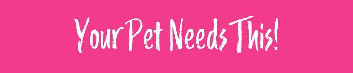 Checklist of The Best Pet Supplies! These are my personal favorite dog and pet supplies and accesories