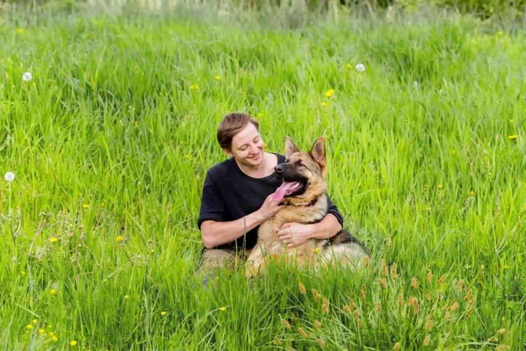 Do German Shepherds bond with one person? #GSD #germanshepherd #dogs #puppies