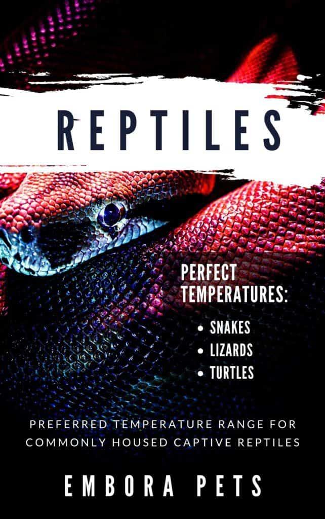 Reptiles Temperature Guide