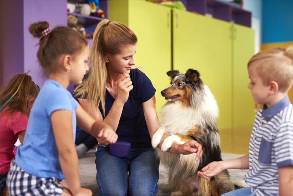 Are Shelties Good With Kids?