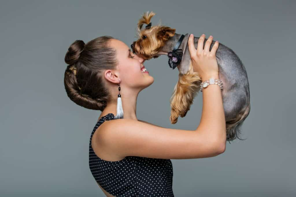 Do Yorkies Need a Lot of Attention?