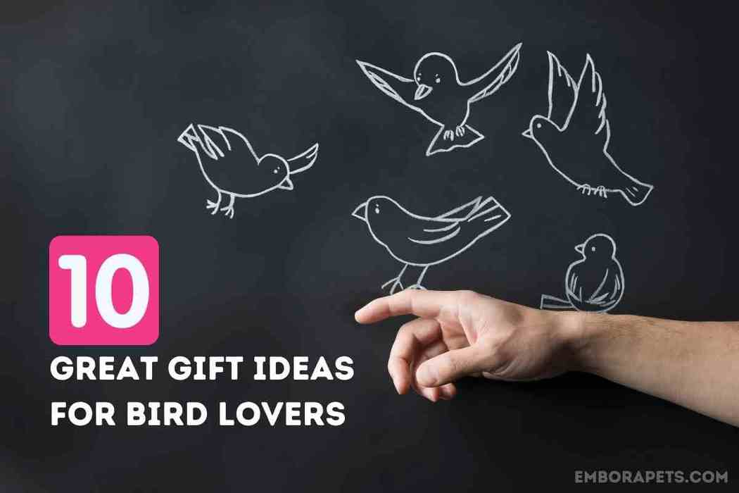 10 Great Gift Ideas To Buy For Bird Lovers