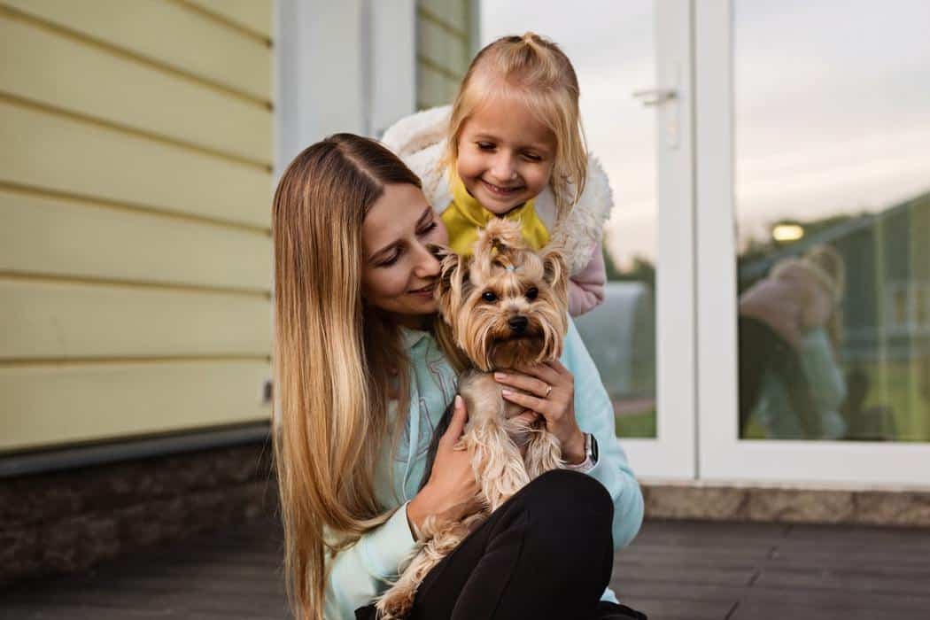 Are Yorkies Good with Kids?