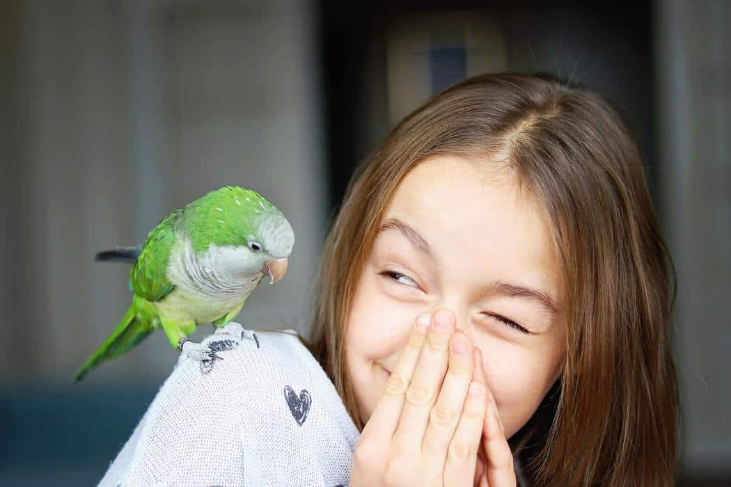 ⭐️Nominated ⭐️ Cute smiling girl playing with her pet green Monk Parakeet parrot